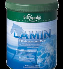 Lamin, vid akut och kronisk vävnadsinflammation
